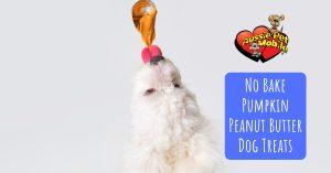 No Bake Pumpkin Peanut Butter Dog Treats
